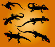 Lizards. Vector silhouettes of lizards on a color background royalty free illustration
