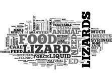 When Lizards Will Not Eat They Have To Eat Word Cloud Royalty Free Stock Photo