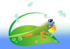 Lizzard Royalty Free Stock Image