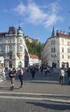 Ljbljana slott på kullarna med sur för gammal stad för arv buidling Royaltyfri Fotografi