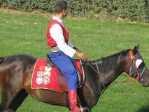 Ljubicevo骑马者比赛 免版税库存照片