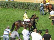 Ljubicevo Equestrian gry Zdjęcie Stock