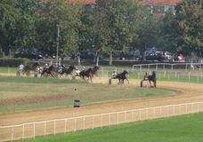 Ljubicevo Equestrian gry Obrazy Stock