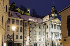 Ljubljana City Hall Royalty Free Stock Image