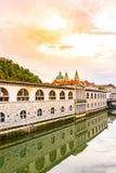 Ljubljana domkyrka, sikt från bron Härlig forntida domkyrka under solnedgången Gammal historisk arkitektur i den Slovenien capien royaltyfria bilder