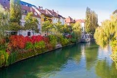 Ljubljana, Eslovênia - opinião colorida do beira-rio no outono, 13 de fotografia de stock