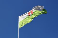 Ljubljana flag Stock Image