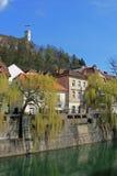 ljubljana flod Arkivbild