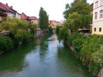 LJUBLJANA SLOVENIEN - JULI, 2014: Ljubljana - Slovenien - stadsmitt, sikt på floden Royaltyfria Foton