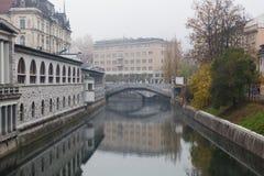 Ljubljanica河和主要市场在卢布尔雅那 免版税图库摄影