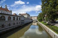 Ljubljanica. Bridge over Ljubljanica river, Ljubljana, Slovenia Royalty Free Stock Image