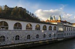 Ljubljanica flod Arkivfoton