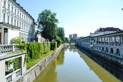 Ljubljanica flod i Ljubljana, Slovenien Arkivfoton