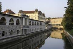 Ljubljanica flod med marknadsplatsen och tre broar Royaltyfria Foton