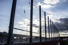 Ljud-absorberande glass skärm längs vägen i centret Svartkonturer av fåglar på exponeringsglaset Bakgrund Royaltyfri Bild