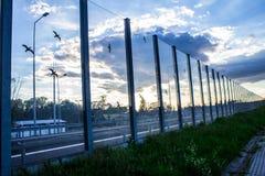 Ljud-absorberande glass skärm längs vägen i centret Svartkonturer av fåglar på exponeringsglaset Bakgrund Royaltyfria Foton