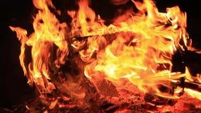Ljud av nattsyrsor, vatten som sveper, och brandknastrande för 30seconds Extrem n?rbildvideo av en brasa