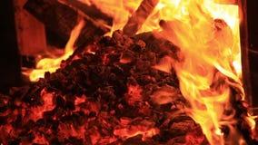 Ljud av nattsyrsor, vatten som sveper, och brandknastrande för 25 sekunder Extrem n?rbildvideo av en brasa arkivfilmer