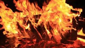 ljud N?rbildvideo av en brinnande picknickb?nk med ?kande styrka vid en kropp av vatten r