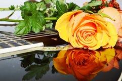 Ljud och blommor, närbild arkivfoton