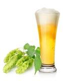 Ljus öl och flygtur royaltyfria bilder