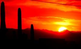 Ljus apelsin och röd solnedgång i den Apache föreningspunkten och Mesa Area Royaltyfria Foton