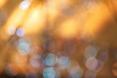 Ljus bakgrund Arkivbilder