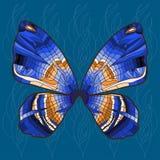 Ljus bakgrund med den ljusa dekorativa handen - dragen fjäril Arkivfoton