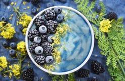 Ljus blå Superfood Smoothiebunke royaltyfri foto