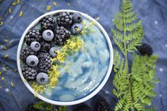 Ljus blå Superfood Smoothiebunke arkivbilder