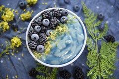 Ljus blå Superfood Smoothiebunke fotografering för bildbyråer