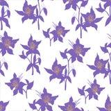 Ljus blom- bakgrund med den purpurfärgade blommavektorn r vektor illustrationer