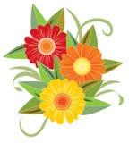 Ljus blomma tre Arkivfoto