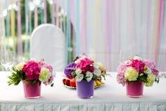 Ljus blommavanlig hortensia Royaltyfri Fotografi