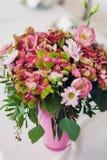 Ljus blommavanlig hortensia Arkivbild