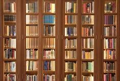 Ljus - brun bokhylla med böcker i Amsterdam Fotografering för Bildbyråer