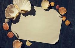 Ljus bwooden skrivbordet med havsskal och arket av papper Fotografering för Bildbyråer