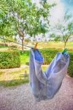 Ljus färgrik bild av grov bomullstvill- eller jeanskortslutningar som ut hänger till dren royaltyfria foton
