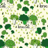 Ljus färgrik modell med broccoli Royaltyfri Bild