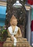 Ljus för Buddha Royaltyfri Fotografi