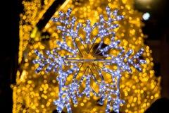 Ljus för ett neon i formen av snöflingor royaltyfri bild