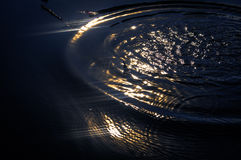 Ljus för fred` s Royaltyfri Foto