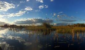 Ljus för sen eftermiddag i den Okavango deltan, Botswana Arkivfoto