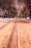Ljus för snöig väg för natt med lyktor Royaltyfria Bilder