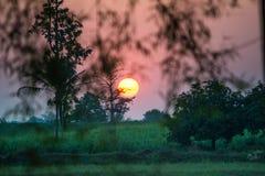 Ljus för tid för bra morgon till liv Arkivfoton