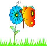 ljus fjärilsblomma Arkivbild