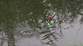 Ljus flöte som svävar på floden med en tugga av fisken lager videofilmer