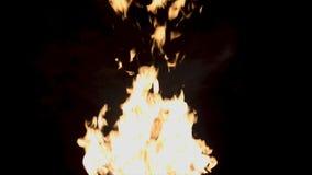 Ljus flamma av brand på svart bakgrund Den härliga men farliga flamman av brand kan orsaka brand eller bränna folk lysande arkivfoto