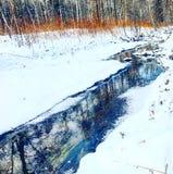 Ljus flod i vinterskogen Royaltyfria Foton