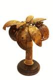 Ljus från frukten av kokosnöten Royaltyfria Bilder